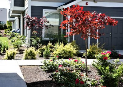 Landscape maintenance for apartments
